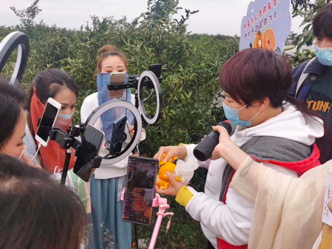 livestreaming-taobao