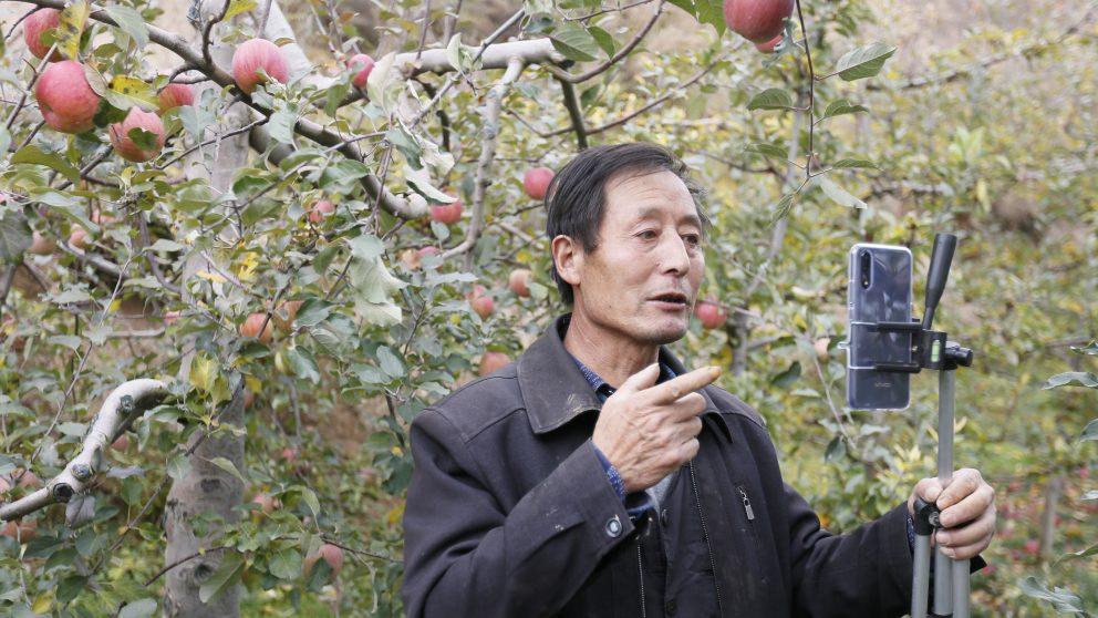 Image_Taobao-Live_Farmer